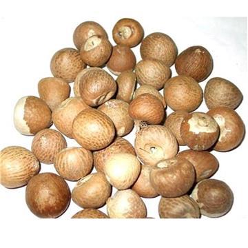 Supari,Betel Nut,Pinang,Areca nut
